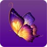 蝴蝶视频污app下载安卓版