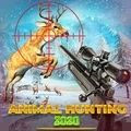 狙击猎人狩猎