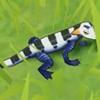 原神蓝角蜥作用及位置介绍