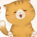 灵猫传可爱憨厚橘又又属性图鉴