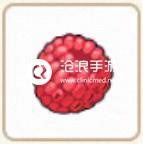 小森生活红莓位置介绍