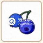 小森生活蓝莓位置介绍