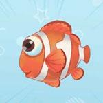 摩尔庄园手游小丑鱼获得方法介绍