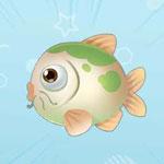 摩尔庄园手游绿鲤鱼获得方法介绍